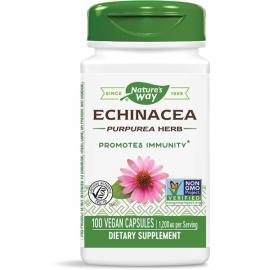 Ехинацея (билка) 400 mg х 100 капс. Nature's Way