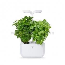 Домашна градина Exky CLASSIC - бял, Veritable