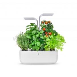 Домашна градина Exky SMART- бял/инокс
