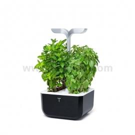 Домашна градина Exky SMART- черен/инокс , Veritable