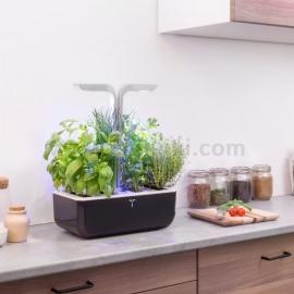 Домашна градина Veritabe SMART- черен/инокс