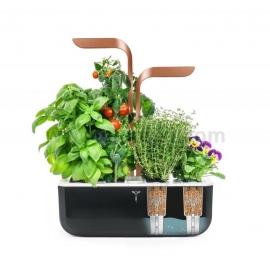 Домашна градина Veritabe SMART- черен/мед