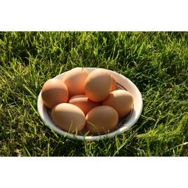 Яйца - кутия